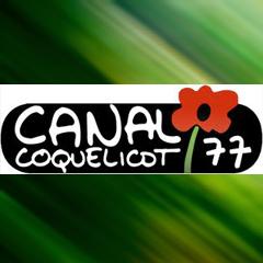 Revue de Presse Canal Coquelicot